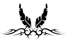31. KONCERT: Crno Perje